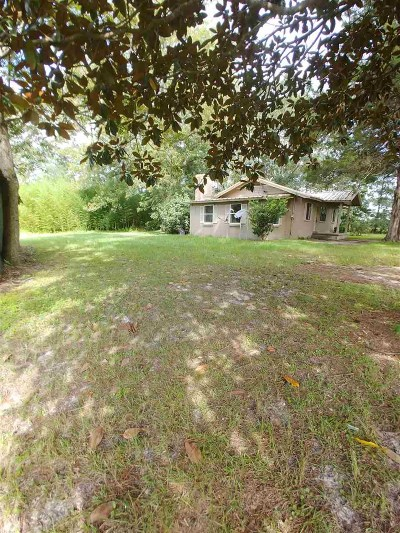 Havana Single Family Home For Sale: 11137 Fla-Ga Hwy