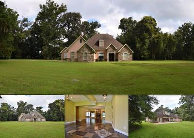 Tallahassee Single Family Home For Sale: 3890 Bellac Road