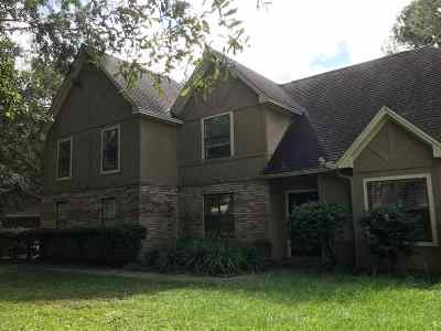Leon County Single Family Home For Sale: 3131 N Shannon Lakes