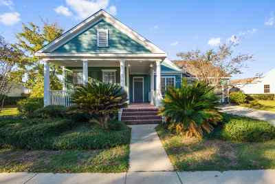 Tallahassee FL Single Family Home New: $349,000