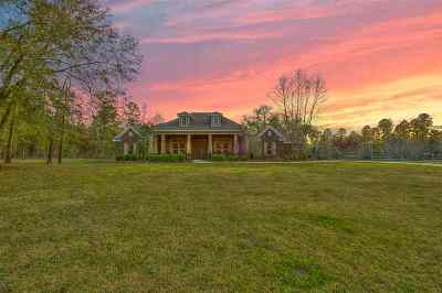 tallahassee Single Family Home For Sale: 8462 Proctor Road