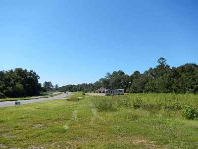 Residential Lots & Land For Sale: 6925 Florida Georgia Hwy