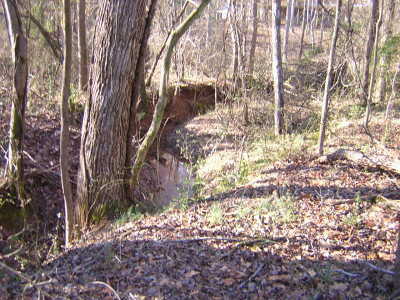 Madison County Residential Lots & Land Active Active: Cedar Lane