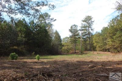 Residential Lots & Land Active Active: Tract 4 Union Church Rd. #4