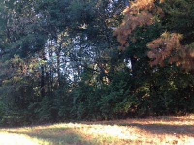 Albany GA Residential Lots & Land For Sale: $5,000