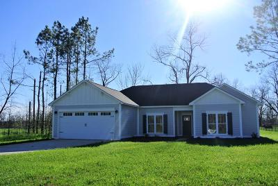 Lee County Single Family Home For Sale: 132 Brompton Drive