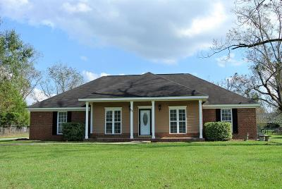 Lee County Single Family Home For Sale: 111 Travis Ln