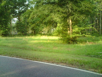 Fitzgerald, Tifton, Ashburn, Ocilla, Albany, Baconton, Lenox, Omega, Abbeville, Alapaha, Cordele, Oakfield, Ray City, Norman Park, Sparks, Chula, Vienna, Arabi, Cobb, Rochelle Residential Lots & Land For Sale: Cool Water Rd