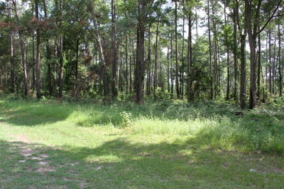 Residential Lots & Land For Sale: 126 North Valhalla Lane
