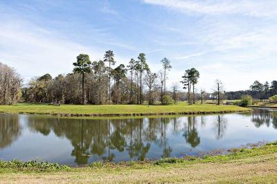 Fitzgerald, Tifton, Ashburn, Ocilla, Albany, Baconton, Lenox, Omega, Abbeville, Alapaha, Cordele, Oakfield, Ray City, Norman Park, Sparks, Chula, Vienna, Arabi, Cobb, Rochelle Residential Lots & Land For Sale: Lot 16 Cannon Branch Rd