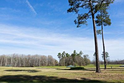 Fitzgerald, Tifton, Ashburn, Ocilla, Albany, Baconton, Lenox, Omega, Abbeville, Alapaha, Cordele, Oakfield, Ray City, Norman Park, Sparks, Chula, Vienna, Arabi, Cobb, Rochelle Residential Lots & Land For Sale: Lot 17 Cannon Branch Rd