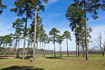 Fitzgerald, Tifton, Ashburn, Ocilla, Albany, Baconton, Lenox, Omega, Abbeville, Alapaha, Cordele, Oakfield, Ray City, Norman Park, Sparks, Chula, Vienna, Arabi, Cobb, Rochelle Residential Lots & Land For Sale: Lot 23 Cannon Branch Rd