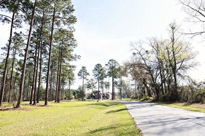 Fitzgerald, Tifton, Ashburn, Ocilla, Albany, Baconton, Lenox, Omega, Abbeville, Alapaha, Cordele, Oakfield, Ray City, Norman Park, Sparks, Chula, Vienna, Arabi, Cobb, Rochelle Residential Lots & Land For Sale: Lot 28 Cannon Branch Rd
