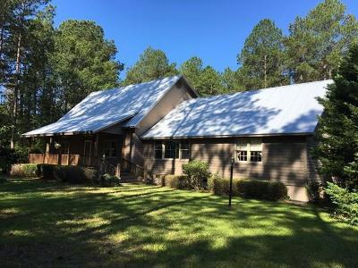 Lake Blackshear, Cordele, Warwick, Arabi, Ashburn, Rebecca, Sycamore Single Family Home For Sale: 205 Saddle Creek Drive