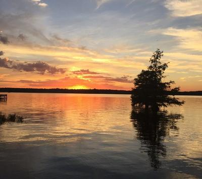 Lake Blackshear, Cordele, Warwick, Arabi, Ashburn, Rebecca, Sycamore Single Family Home For Sale: 422-4 Lakeshore Way