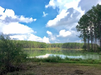 Residential Lots & Land For Sale: Lot #29 Southern Lakes Drive