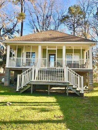 Lake Blackshear, Cordele, Warwick, Arabi, Ashburn, Rebecca, Sycamore Single Family Home For Sale: 542 Scenic Rt