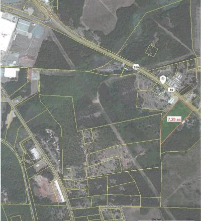 Commercial For Sale: 450 U S Hwy 280