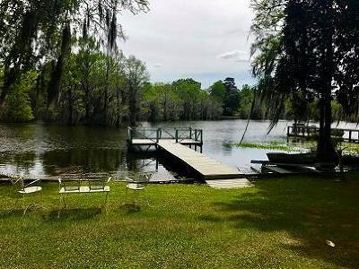 Lake Blackshear, Cordele, Warwick, Arabi, Ashburn, Rebecca, Sycamore Single Family Home For Sale: 334 Swift Creek