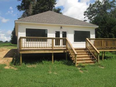 Lake Blackshear, Cordele, Warwick, Arabi, Ashburn, Rebecca, Sycamore Single Family Home For Sale: 360 Swift Creek