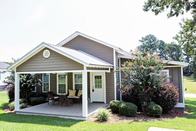 Lake Blackshear, Cordele, Warwick, Arabi, Ashburn, Rebecca, Sycamore Single Family Home For Sale: 115 Blue Heron Way