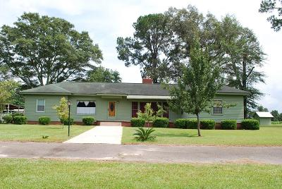 Lake Blackshear, Cordele, Warwick, Arabi, Ashburn, Rebecca, Sycamore Single Family Home For Sale: 291 Old Albany Rd