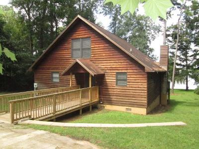 Lake Blackshear, Cordele, Warwick, Arabi, Ashburn, Rebecca, Sycamore Single Family Home For Sale: 174 Scenic Rt
