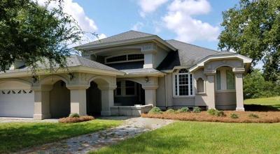 Lake Blackshear, Cordele, Warwick, Arabi, Ashburn, Rebecca, Sycamore Single Family Home For Sale: 240 Cedar Point Circle