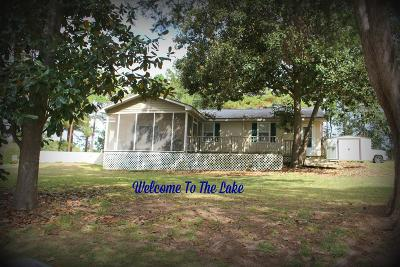 Lake Blackshear, Cordele, Warwick, Arabi, Ashburn, Rebecca, Sycamore Single Family Home For Sale: 143 Swift Creek Rd