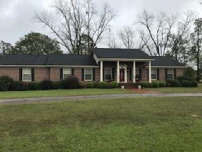 Single Family Home For Sale: 6266 N Hwy 41