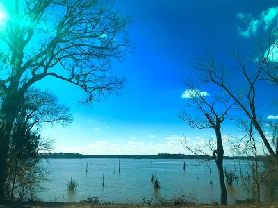 Fitzgerald, Tifton, Ashburn, Ocilla, Albany, Baconton, Lenox, Omega, Abbeville, Alapaha, Cordele, Oakfield, Ray City, Norman Park, Sparks, Chula, Vienna, Arabi, Cobb, Rochelle Residential Lots & Land For Sale: Lot 10 The Refuge On Flintview Dr