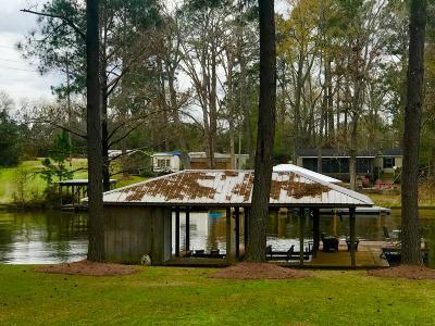 Poulan, Sumner, Warwick, Sylvester, Ashburn, Sycamore, Rebecca Single Family Home For Sale: 354 Spring Creek Rd