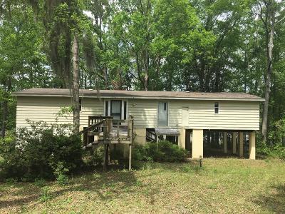 Lake Blackshear, Cordele, Warwick, Arabi, Ashburn, Rebecca, Sycamore Single Family Home For Sale: 174 S Cedar Creek Road