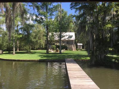 Lake Blackshear, Cordele, Warwick, Arabi, Ashburn, Rebecca, Sycamore Single Family Home For Sale: 694 Scenic Rt