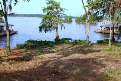 Fitzgerald, Tifton, Ashburn, Ocilla, Albany, Baconton, Lenox, Omega, Abbeville, Alapaha, Cordele, Oakfield, Ray City, Norman Park, Sparks, Chula, Vienna, Arabi, Cobb, Rochelle Residential Lots & Land For Sale: Lot # 4 Flintview Drive
