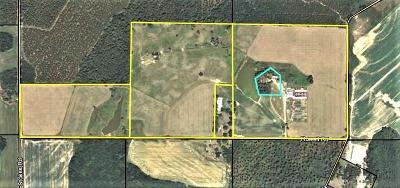 Lake Blackshear, Cordele, Warwick, Arabi, Ashburn, Rebecca, Sycamore Single Family Home For Sale: 243 Rowell Road