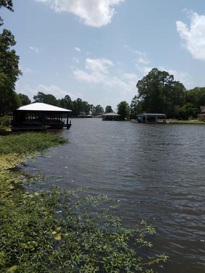 Lake Blackshear, Cordele, Warwick, Arabi, Ashburn, Rebecca, Sycamore Single Family Home For Sale: 302 Lakeshore Way