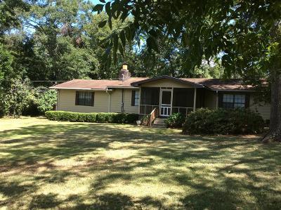 Lake Blackshear, Cordele, Warwick, Arabi, Ashburn, Rebecca, Sycamore Single Family Home For Sale: 230 Mill Branch Rd