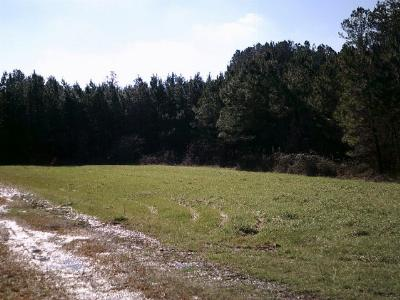 Chatsworth, Eton, Cohutta, Varnell, Dalton, Ringgold, Rocky Face, Tunnel Hill Residential Lots & Land For Sale: W Nickajack Road