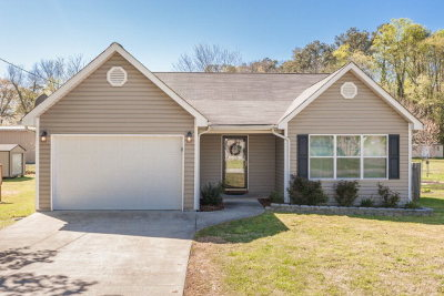 Ringgold Single Family Home For Sale: 53 Meadow Lane