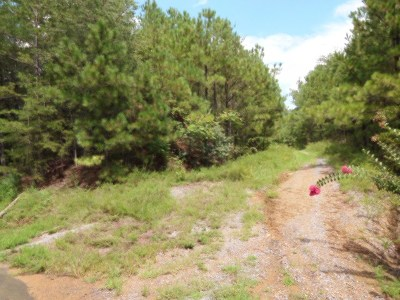 Chatsworth, Eton Residential Lots & Land For Sale: North Lake Drive
