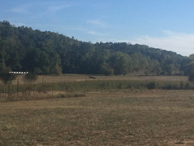 Rocky Face, Tunnel Hill Residential Lots & Land For Sale: 3933 Freeman Springs Road