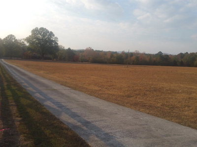Chatsworth, Eton, Cohutta, Varnell, Dalton, Ringgold, Rocky Face, Tunnel Hill Residential Lots & Land For Sale: 3522 SE Old Dixie Hwy SE