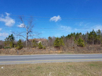 Chatsworth, Eton, Cohutta, Varnell, Dalton, Ringgold, Rocky Face, Tunnel Hill Residential Lots & Land For Sale: Hwy 52