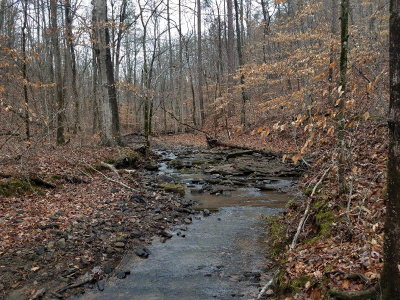 Rocky Face, Tunnel Hill Residential Lots & Land For Sale: Old Ringgold Road