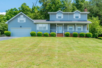 Ringgold Single Family Home For Sale: 296 Townsend Circle