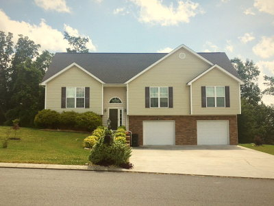 Ringgold Single Family Home For Sale: 123 Promise Heights Drive