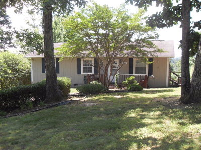 Ringgold Single Family Home For Sale: 241 Creeks Bend Drive