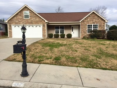 Ringgold Single Family Home For Sale: 457 Peachtree Circle