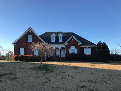 Ringgold Single Family Home For Sale: 133 Asheville Drive